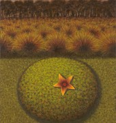 Image of Richard Wastell's painting, 'Star Flower, Cushion Plant'.