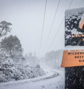 Wilderness Gallery sign in the snow