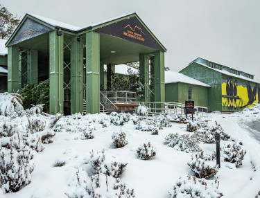 Winter Wilderness Gallery