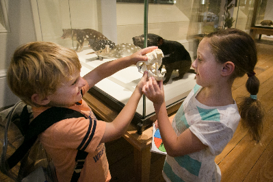 Young visitors enjoy the Earth and Life gallery at TMAG - Tasmanian Museum and Art Gallery