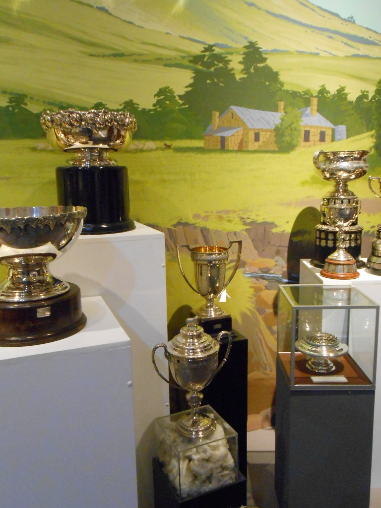 Midlands Agricultural Association trophies on display in the Tasmanian Wool Centre
