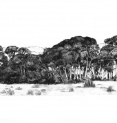 Dallas Richardson - Along the Way - Tea Trees Tamar Valley