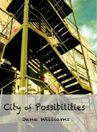 Book cover of 'City of Possibilities' by Jane Williams