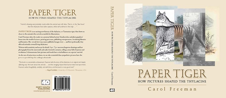 Book cover of 'Paper Tiger' by Carol Freeman