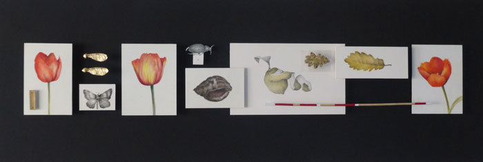 pencil, watercolour and found objects on paper