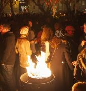 The Winter Feast crowd fan the flames at Dark MOFO 2014
