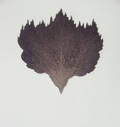 etching aquatint chine colle, edition of 15, 40 x 22cm