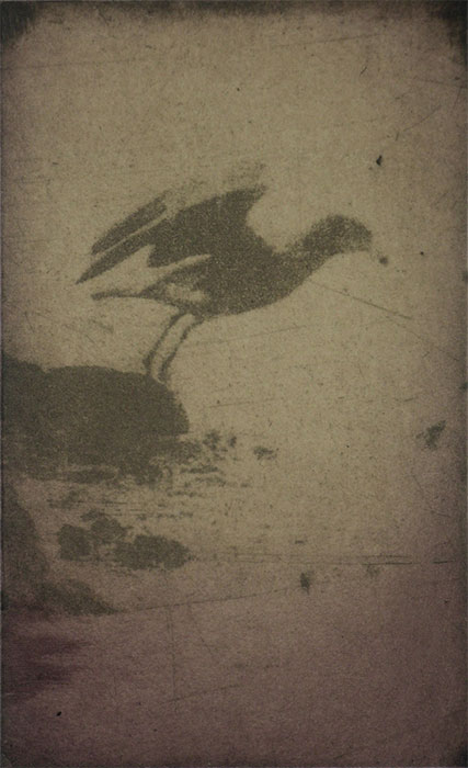 photo etching aquatint chine colle, edition of 10, 40 x 26cm