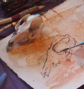Image of an animal skull and painting