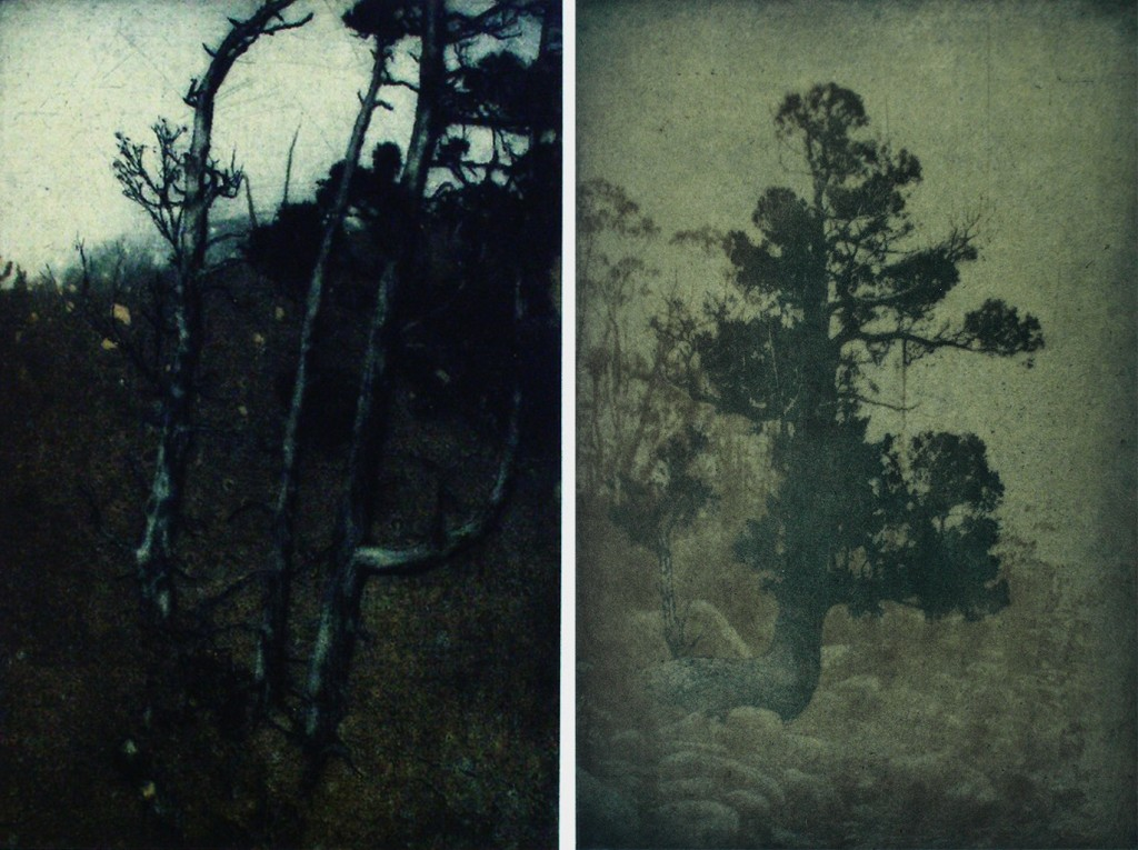 Three Days in the Mountains - The Old Tree, Tree by the Lake - etching
