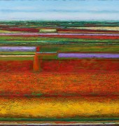 Banded Field, Sassafras Spring. 150x150cm oil on linen