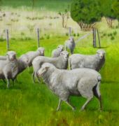 oil on linen -Sheep