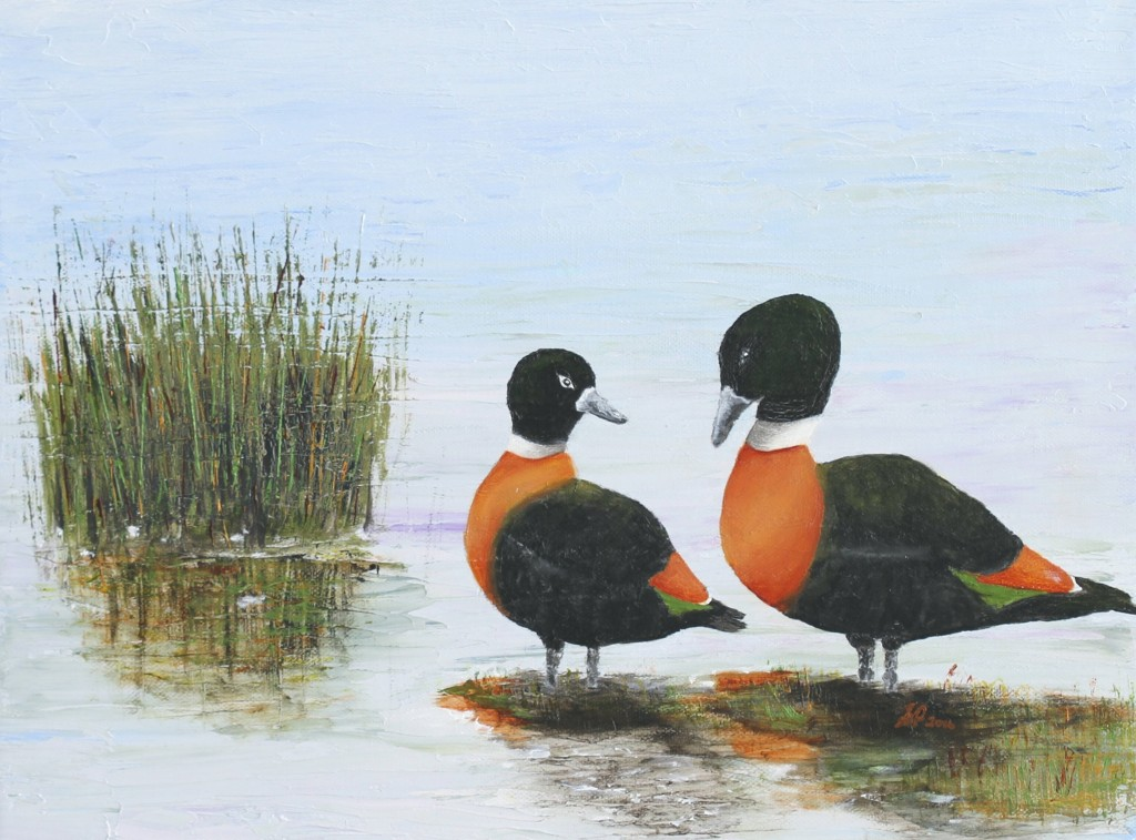 oil on canvas - Shelducks