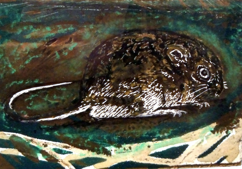 Tasmania's Native Long Tailed Mouse - solar plate etch, viscosity printing