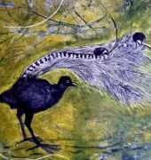 Superb Lyrebird (yellow) - collograph, engraving