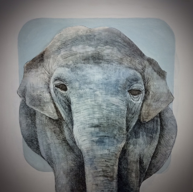 Elephant - acrylic, pen and ink on canvas