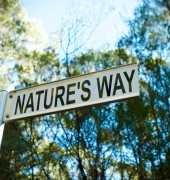 Image of Nature's Way