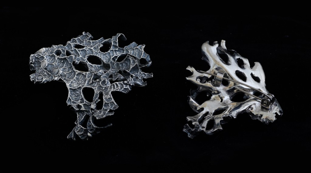 Image of Lichen brooch (front and back)