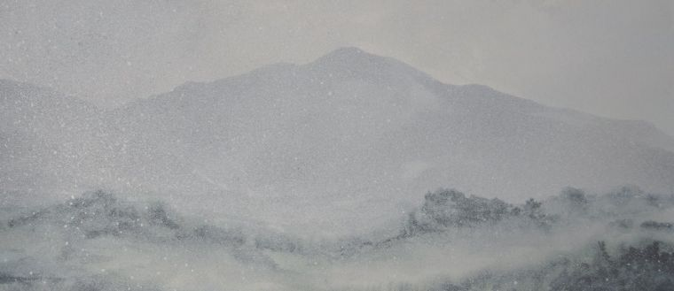Image of I think it's almost snowing - South Coast Track