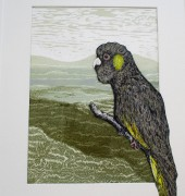 Unique State, collage of linocut and drypoint print, handcoloured