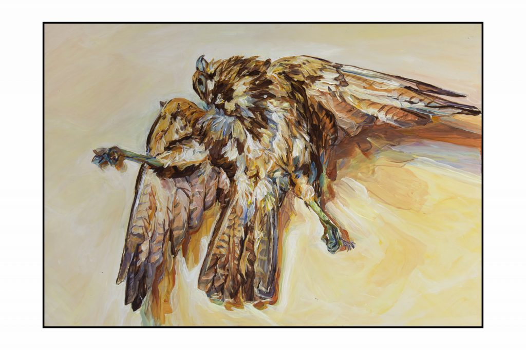 Brown-Falcon.Van-Diemens-Memento-Mori-2013-14-acrylic-on-masonite-42x60cm-Henrietta-Manning-Photographer-Simon-Olding.