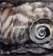 """Large Shell"" 2012"