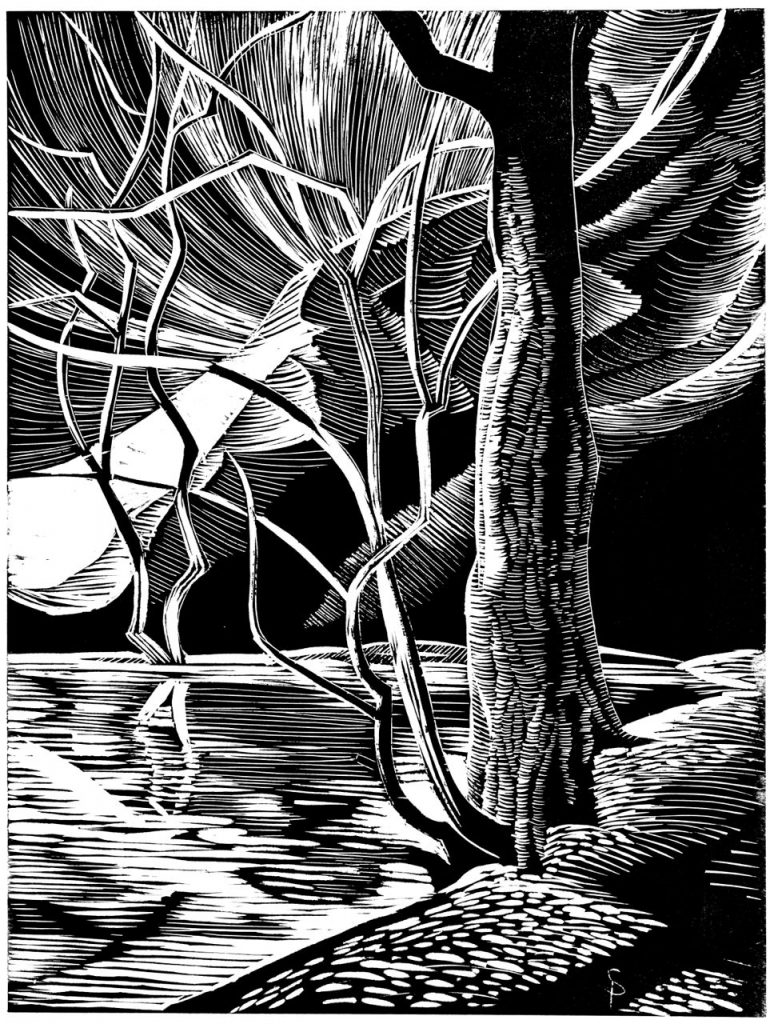 Earth Designs - Tree Mountain Reflections