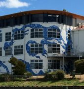 International Orange - Taroona High School