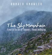 Shy Mountain cover image