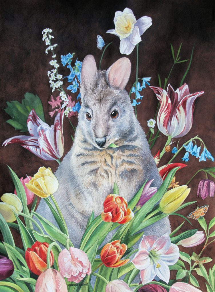 Pademelon with Dutch Flowers - Graeme Whittle