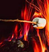 marshmallows over a campfire close up