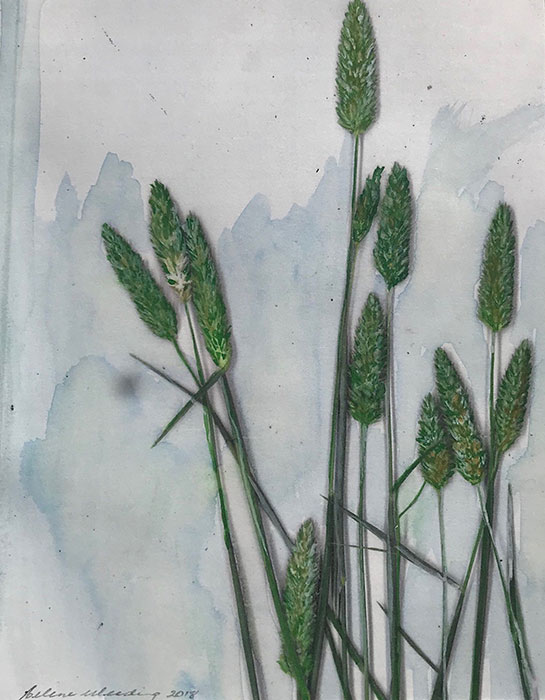 Summer grass #2, Helene Weeding, 2018