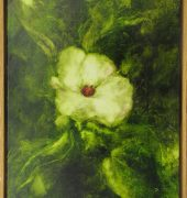 Hibiscus Forsteri 2018, oil on linen, 53 x 37cm, Kylie Elkington