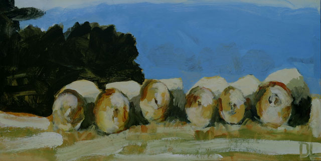 10 Hay rolls, Donna Lougher