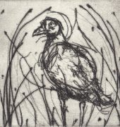 Conor Richardson : Abstracting Time III : Native Hen. Drypoint.