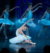 Swan Lake (image credit: Jared Taylor)