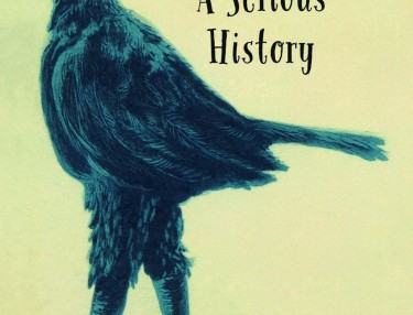 Silliness a serious History CVR 10 CE.indd