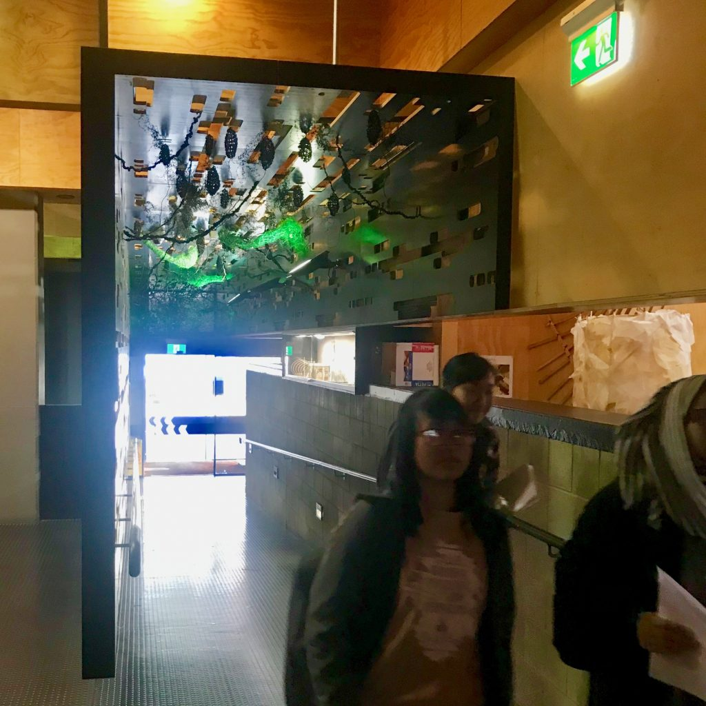 Hallway - Morphologica, Seed Point 1 2019, installation at Architecture and Design, UTAS Inveresk campus, Linda Erceg, 2019. Photographer: Linda Erceg