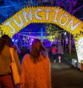 Junction Arts 2018 Festival. Image credit: Jacob Collings