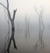 Martin Walch and David Stephenson. Lake King William (2011). Four Mornings, HD video.