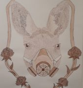 , April CORBETT, Leighland Christian School - Ulverstone & Burnie, 1. 'Fresh Air', (Kangaroo),Ink and bamboo reed pen on paper, Art Production