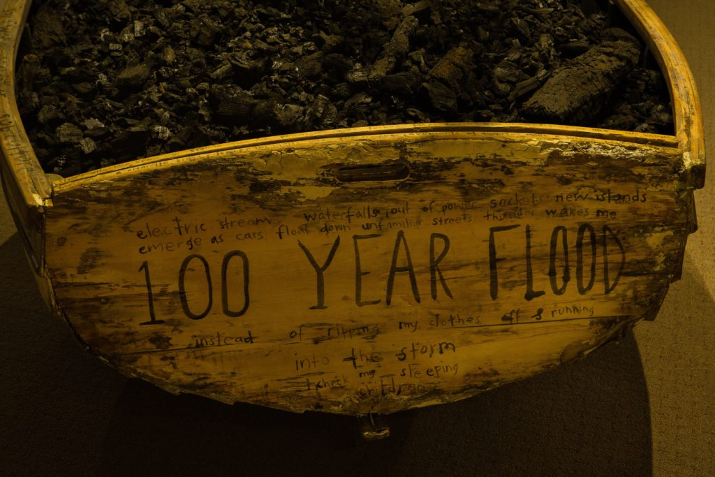 Selena de Carvalho, 100 Year Flood (detail), exhibition view 2018. Photographer: Rick Eaves