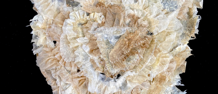 Kate Campbell-Pope_memento-mori_2021_wallaby and deer tissue with linen thread_ 25x23cm